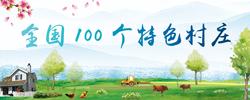 全国100个特色村庄