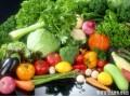绿色源于生命,生命源于绿色,沁阳市绿色蔬菜专业种植