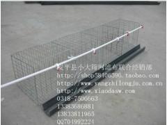 鸡鸽兔笼狐狸笼鹌鹑笼水貂笼貉子笼各种养殖设备