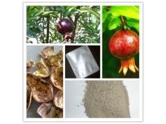 厂家现货供应/涩肠止泻/40%95%鞣花酸/石榴皮提取物