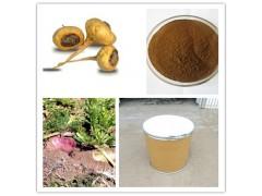 供应10:1玛卡提取物 保健品原料 量大从优
