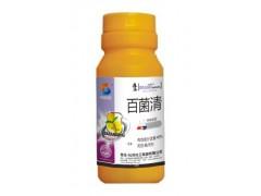 40%百菌清 霜霉病特效药 早晚疫病特效药