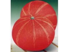 红蜜南瓜种子 观赏葫芦种子