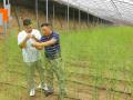 厉广辉:倾心打造沿黄芦笋全产业链